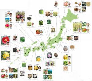 coyori生産地マップ